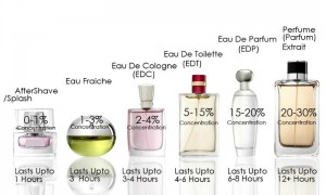 Difference Between EDP, EDT